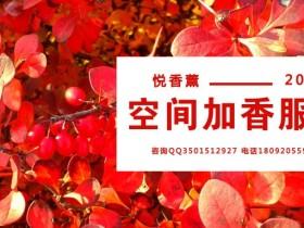 2019来悦香薰的香味世界来流连吧!