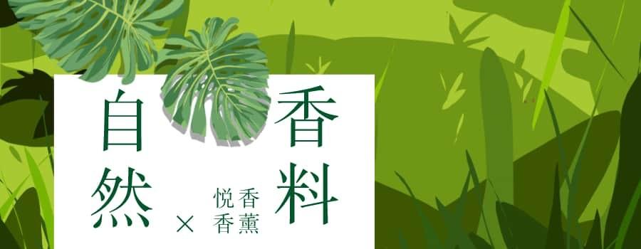 可以生产香精香料的植物有哪些?分享中英文对照的香精油介绍
